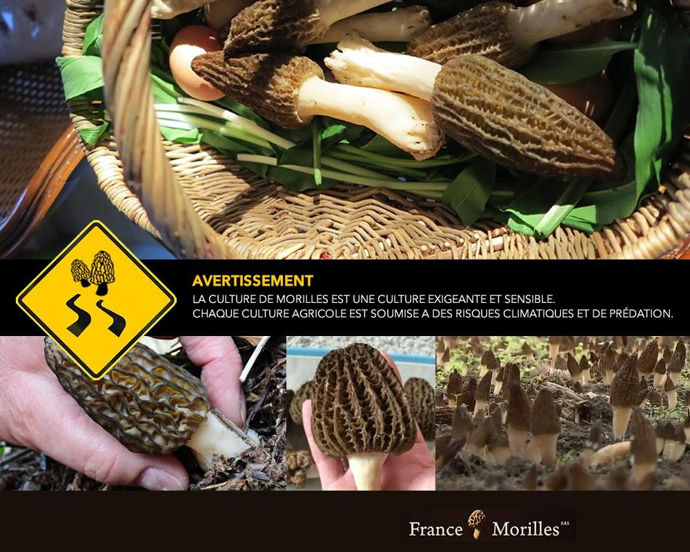"""Licence expérimentale """"grand-public"""" destinée aux Particuliers"""